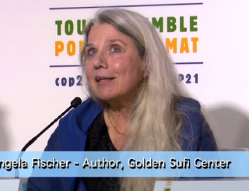 Angela Fischer – GPIW beim COP21 in Paris